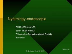 Nylmirigyendoscopia DR HUSZKA JNOS Szent Istvn Krhz Florrggefejnyaksebszeti