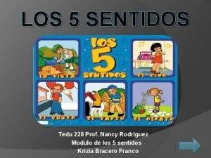 LOS 5 SENTIDOS Tedu 220 Prof Nancy Rodriguez