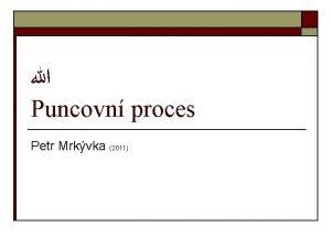 Puncovn proces Petr Mrkvka 2011 Puncovn proces o