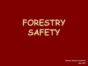 FORESTRY SAFETY Forestry Revision Committee May 2007 TERMS