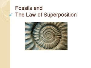 Fossils and The Law of Superposition Fossils and