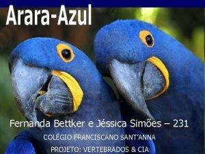 Fernanda Bettker e Jssica Simes 231 COLGIO FRANCISCANO