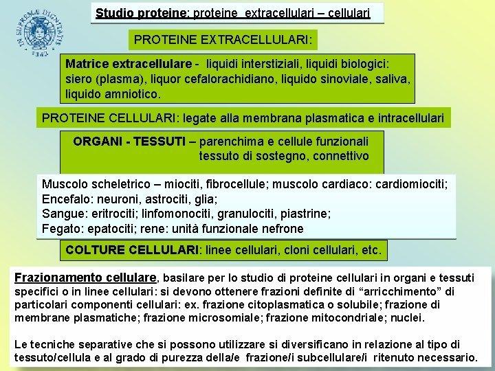 Studio proteine proteine extracellulari cellulari PROTEINE EXTRACELLULARI Matrice