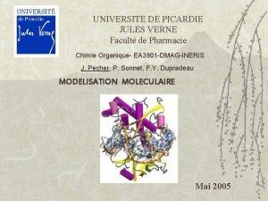 UNIVERSITE DE PICARDIE JULES VERNE Facult de Pharmacie