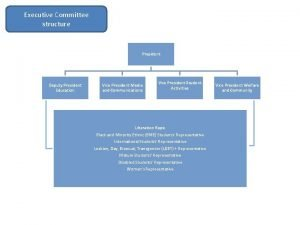Executive Committee structure President Deputy President Education Vice