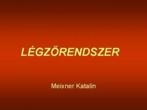 LGZRENDSZER Meixner Katalin Lgzrendszer rszei cavum nasi orrmellkregek