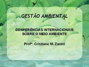 GESTO AMBIENTAL CONFERNCIAS INTERNACIONAIS SOBRE O MEIO AMBIENTE