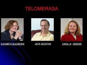 TELOMERASA ELISABETH BLACKBURN JACK SZOSTAK LUS JIMENEZ RUIZ