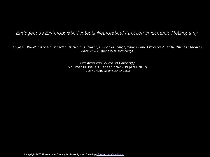 Endogenous Erythropoietin Protects Neuroretinal Function in Ischemic Retinopathy