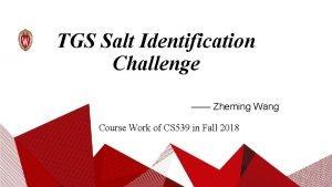 TGS Salt Identification Challenge Zheming Wang Course Work