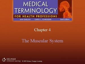 Chapter 4 The Muscular System 2009 Delmar Cengage