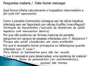 Perguntas malaria Take home message Qual forma infecta