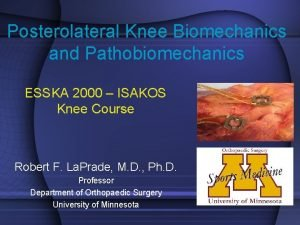 Posterolateral Knee Biomechanics and Pathobiomechanics ESSKA 2000 ISAKOS