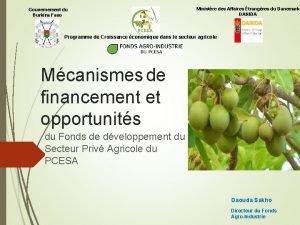 Gouvernement du Burkina Faso Ministre des Affaires trangres