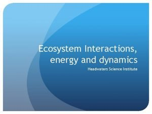 Ecosystem Interactions energy and dynamics Headwaters Science Institute