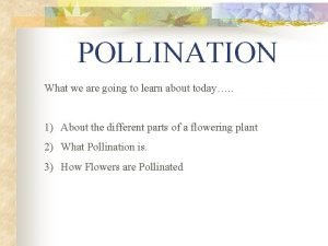 POLLINATION What we are going to learn about