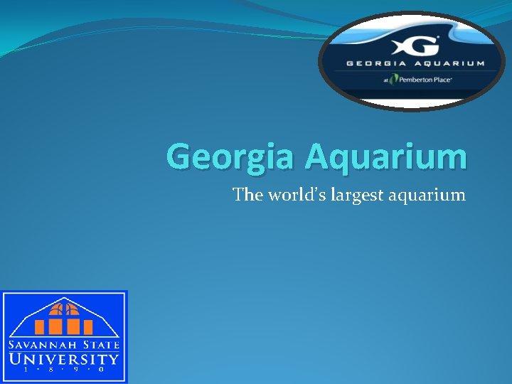Georgia Aquarium The worlds largest aquarium 6 3