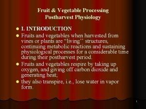 Fruit Vegetable Processing Postharvest Physiology I INTRODUCTION Fruits