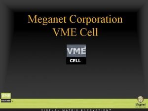 Meganet Corporation VME Cell Meganet Corporation is a