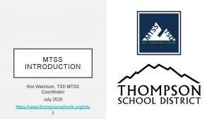 MTSS INTRODUCTION Kim Watchorn TSD MTSS Coordinator July