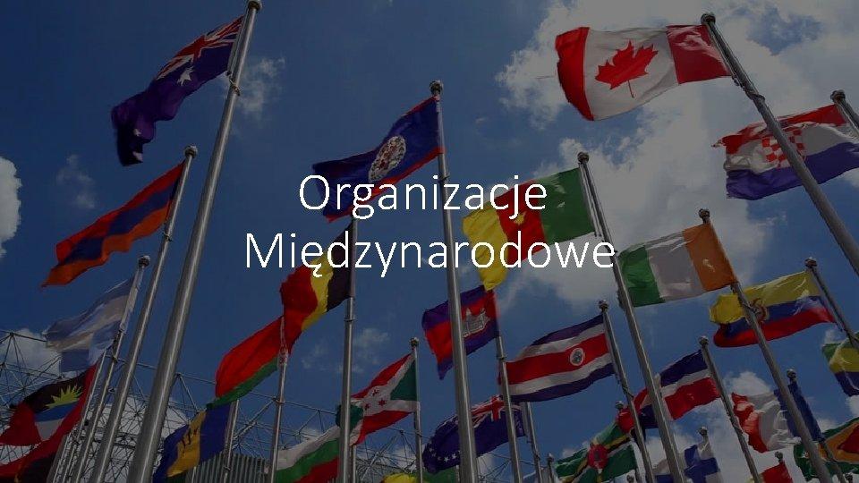 Organizacje Midzynarodowe Organizacje Midzynarodowe to pewna zinstytucjonalizowana tzn