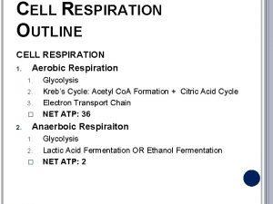 CELL RESPIRATION OUTLINE CELL RESPIRATION 1 Aerobic Respiration
