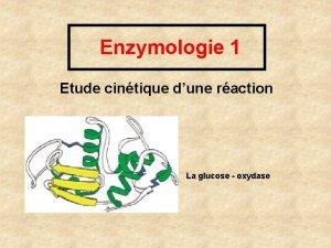 Enzymologie 1 Etude cintique dune raction La glucose