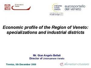 Economic profile of the Region of Veneto specializations