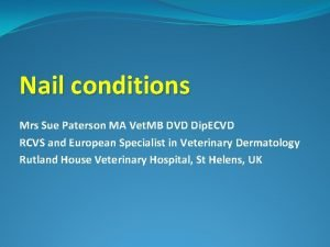 Nail conditions Mrs Sue Paterson MA Vet MB