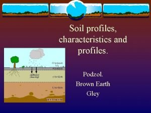 Soil profiles characteristics and profiles Podzol Brown Earth