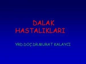 DALAK HASTALIKLARI YRD DO DR MURAT KALAYCI 1