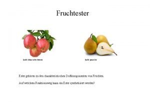 Fruchtester Quelle klimasuchtschutz de Quelle gomeal de Ester
