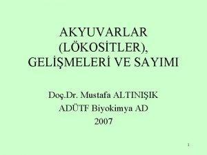 AKYUVARLAR LKOSTLER GELMELER VE SAYIMI Do Dr Mustafa
