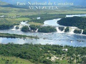 Parc National de Canaima VENEZUELA Le Parc de