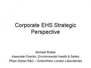 Corporate EHS Strategic Perspective Michael Rottas Associate Director