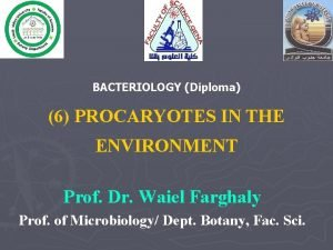 BACTERIOLOGY Diploma 6 PROCARYOTES IN THE ENVIRONMENT Prof