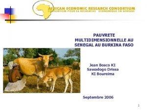 PAUVRETE MULTIDIMENSIONNELLE AU SENEGAL AU BURKINA FASO Jean