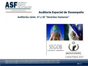 Auditora Especial de Desempeo Auditoras nms 47 y