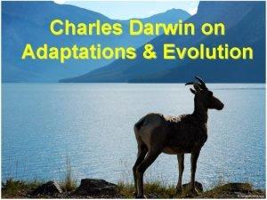Charles Darwin on Adaptations Evolution Darwin observed Overproduction