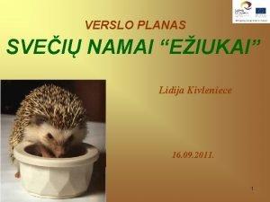 VERSLO PLANAS SVEI NAMAI EIUKAI Lidija Kivleniece 16