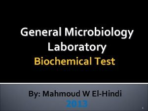 General Microbiology Laboratory Biochemical Test By Mahmoud W