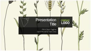Presentation Title Pitch Deck Tagline Can Extend to