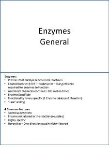 Enzymes General Enzymes Proteins that catalyze biochemical reactions