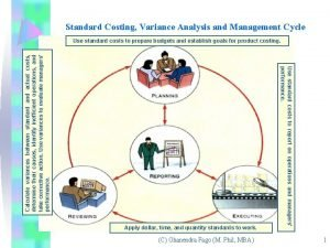 Standard Costing Variance Analysis and Management Cycle Apply
