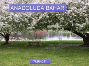 Anadoluda Bahar ANADOLUDA BAHAR Trke TRKE Anadoluda Bahar