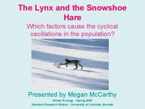 The Lynx and the Snowshoe Hare Which factors