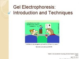 Gel Electrophoresis Introduction and Techniques http vadlo comcartoons