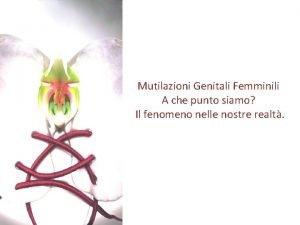 Mutilazioni Genitali Femminili A che punto siamo Il