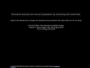 Nicorandil reduces burn wound progression by enhancing skin