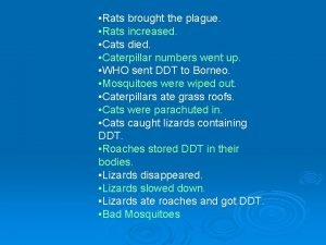 Rats brought the plague Rats increased Cats died